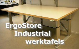 ErgoStore Industrial